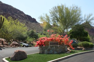 Sanctuary - driveway